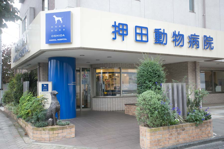 押田動物病院(ホテル)