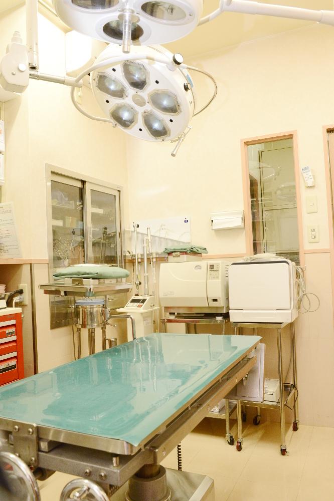 オリーブ動物医療センターグループ なぎつじ動物病院