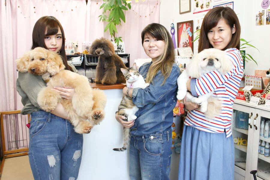 pet grooming & hotel KotaKuna base