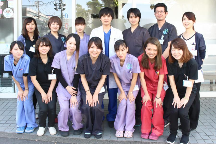 エルムス動物医療センター八幡山院(トリミング)