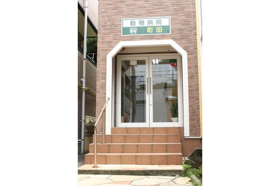 動物病院 町田(トリミング)