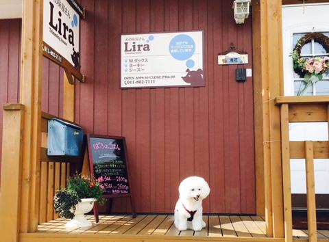 犬の床屋さんLira