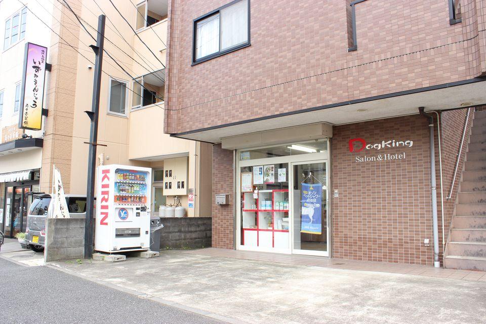Dogking 中田店