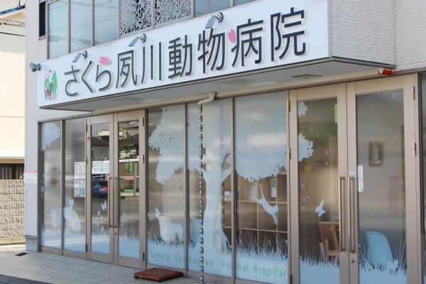 さくら夙川動物病院