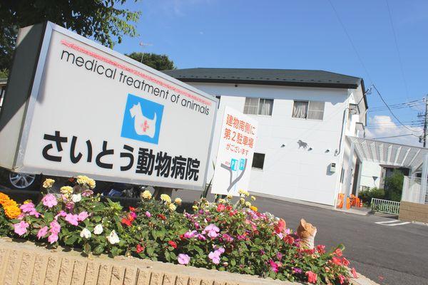 さいとう動物病院(群馬県)