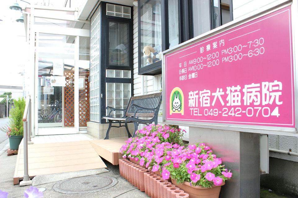 新宿犬猫病院(ホテル)