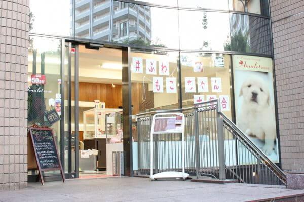Amulet 代官山店(ペットホテル)
