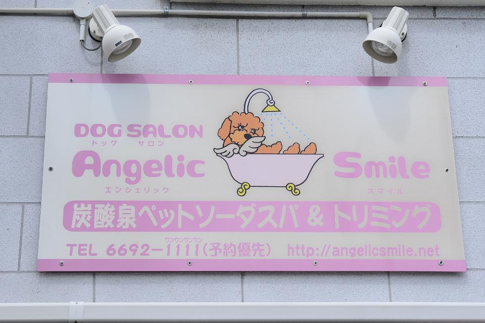ドッグサロン Angelic Smile(エンジェリックスマイル)