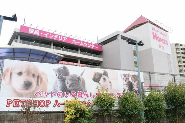 隅田川動物病院