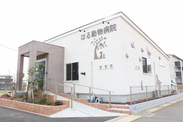 はる動物病院(千葉県)