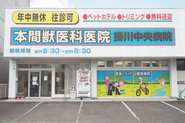 本間獣医科医院掛川中央病院(ペットホテル)