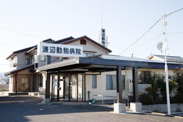 渡辺動物病院(ペットホテル)