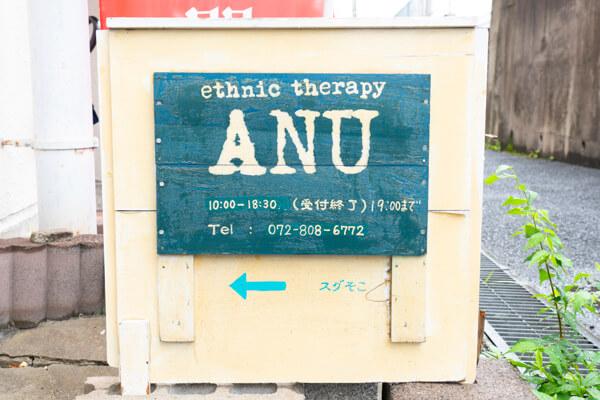 ethnic therapy ANU