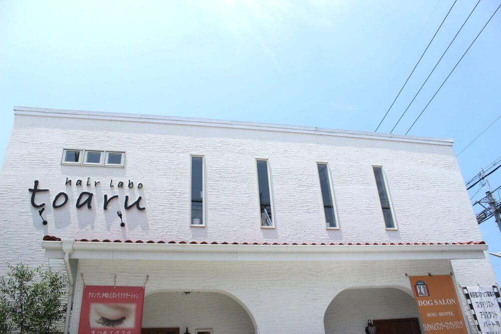 toaru dog salon とあるドッグサロン (ペットホテル)