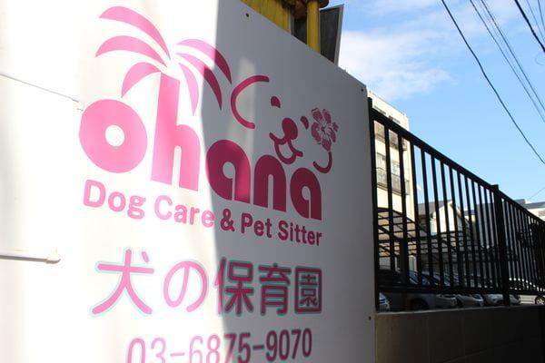 ドッグケア&ペットシッター Ohana