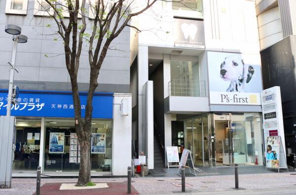 Pet's Salon パレハ 天神店(ペットホテル)