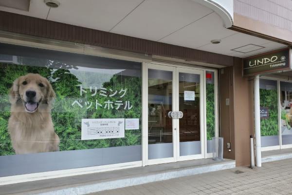 LINDO生田