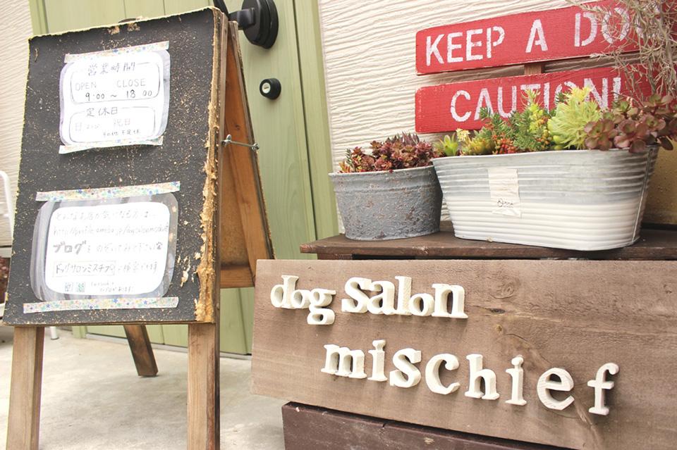 dog salon mischief(ペットサロン・トリミング)