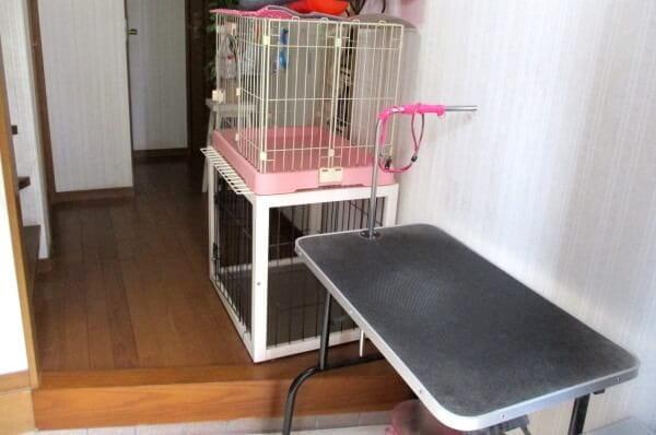 ドッグサロン 犬のしっぽ(ペットホテル)