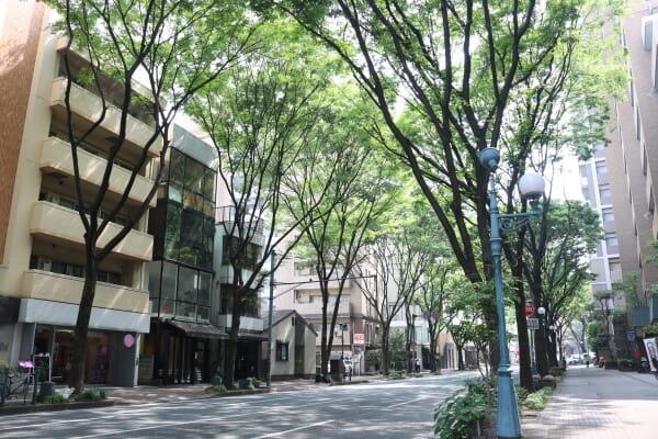PET DESIGN 赤坂けやき通り店(ペットホテル)