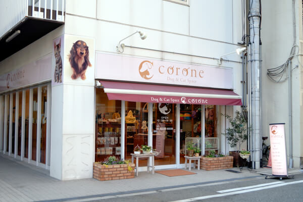 Dog&Cat Space Corone(ペットホテル)