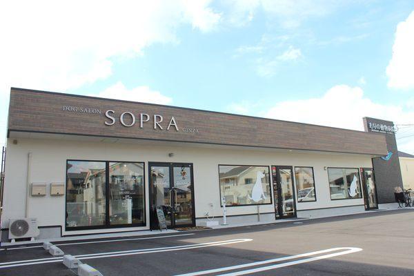 SOPRA GINZA 流山セントラルパーク店(ペットホテル)