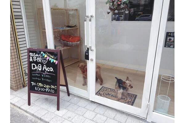 Dog Aco(ペットホテル)