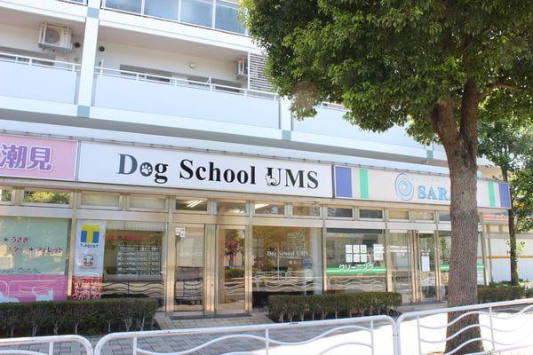 DogSchool UMS(ペットホテル)