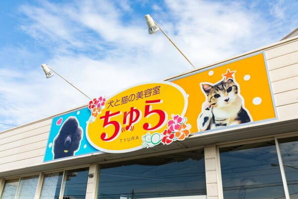 犬と猫の美容室ちゅら(ペットホテル)