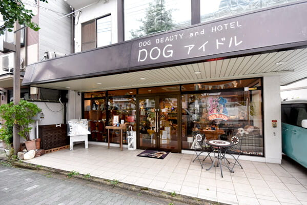 DOG アイドル