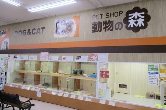 動物の森 堺インター店