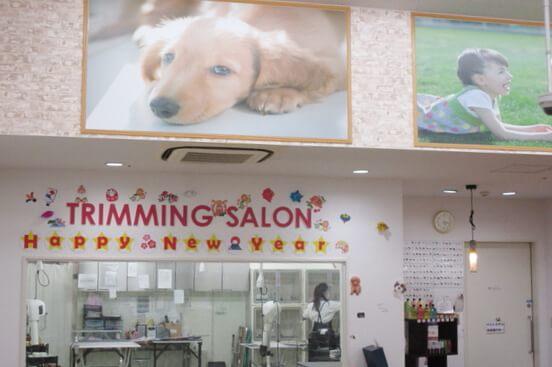 空港ドッグセンター 堺浜店